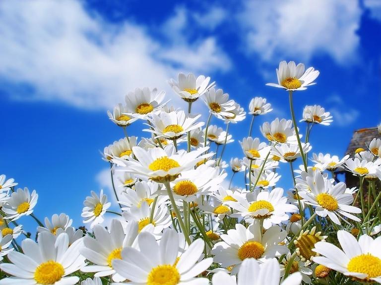 Zaštitite se od sunca i reducirajte boravak na otvorenom