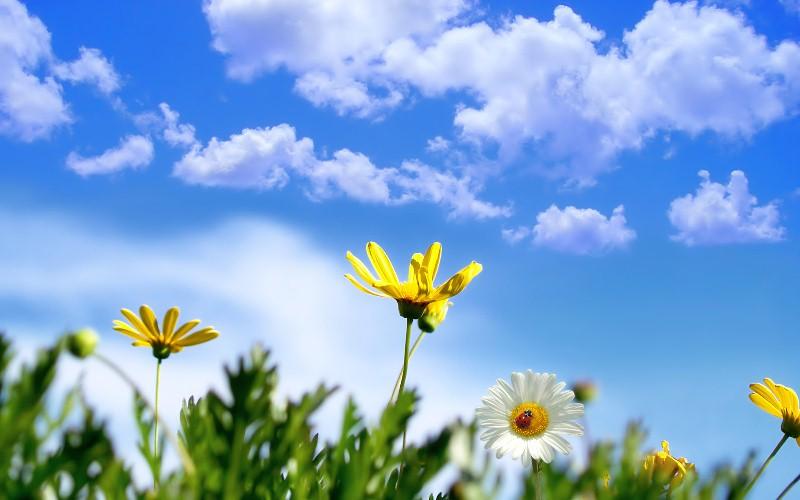 Danas sunčano vrijeme uz maksimalnu temperaturu i do 34°C