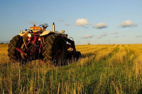 Trojica Bosanaca krala traktore u Austriji, pa ih prodavali na internetu