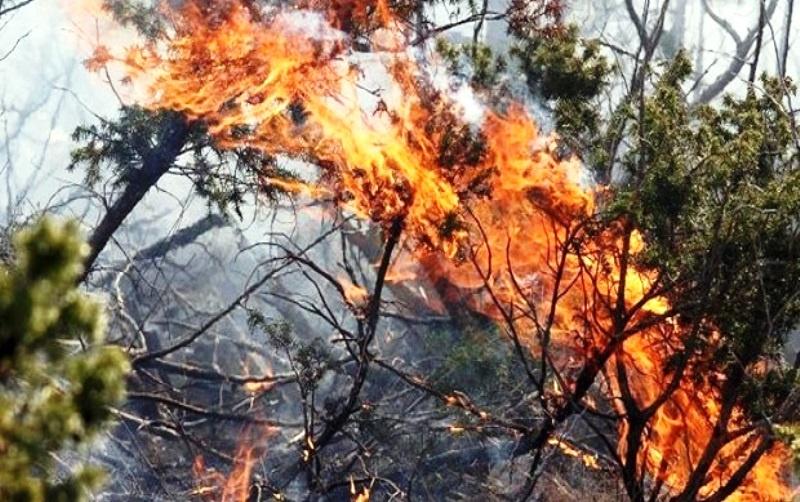 U Ljubinju vatra pod kontrolom, jutros ponovo djelovao helikopter OS BIH