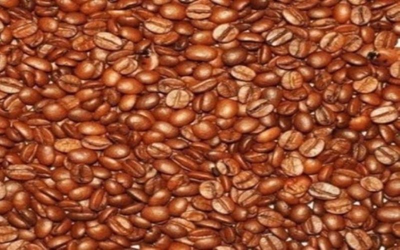 Lockdown u Vijetnamu i mrazevi u Brazilu mogli bi ugroziti globalnu opskrbu kafom