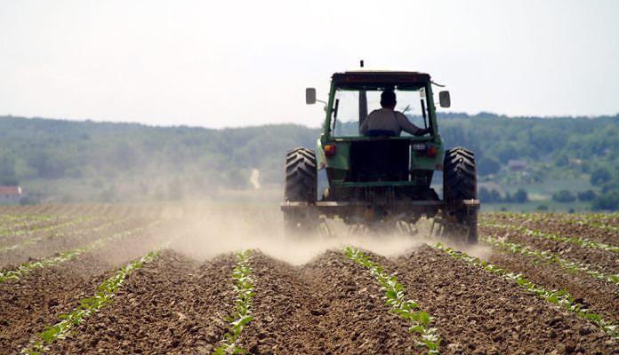 U Semberiji utvrđeno prisustvo GMO soje