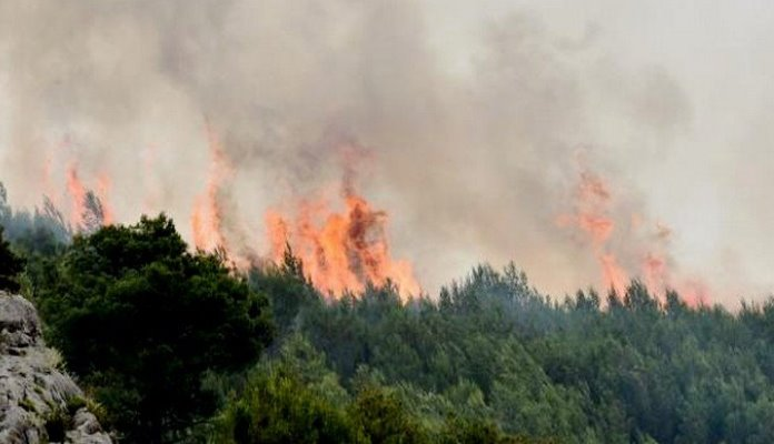 Požar kod Bosanskog Grahova, potrebna pomoć helikoptera OSBiH