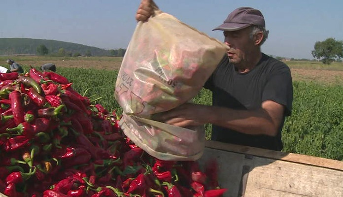 Hrvatske takse na voće i povrće iz regije 20 puta veće