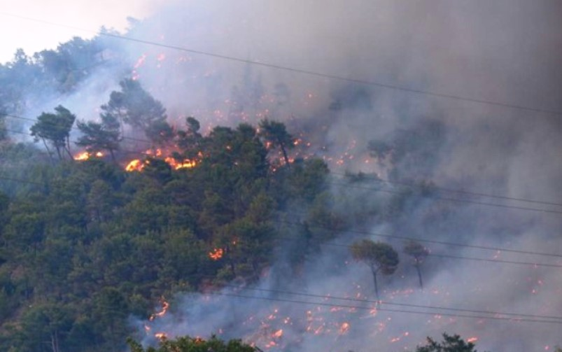 Izbio požar južno od Makarske, zatvoren dio Jadranske magistrale
