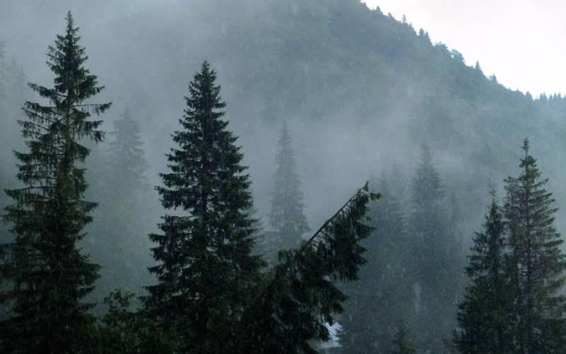 FHZ izdao žuti meteoalarm za određena područja Bosne i Hercegovine
