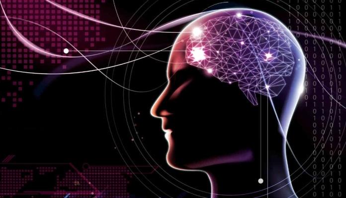 Naučnici pretvorili moždane signale u govor