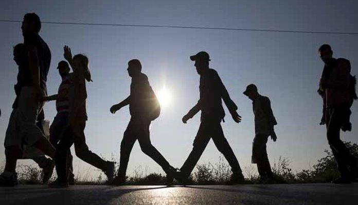 Migranti se prerušili u odbojkaše Ukrajine: Policija ih zatekla s ukradenim pasošima