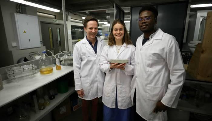 Napravljene prve cigle od ljudskog urina