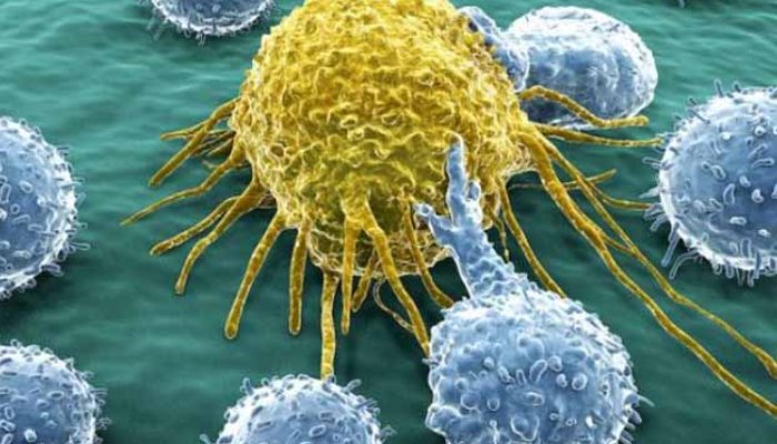 Danas se obilježava Svjetski dan borbe protiv raka