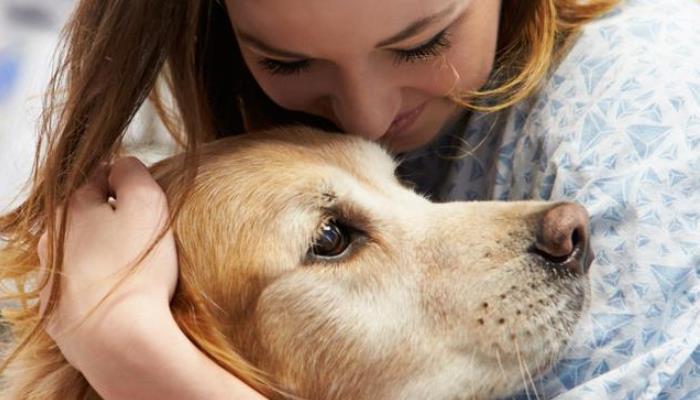 Studija utvrdila da život s psom povećava rizik od zaraze koronavirusom