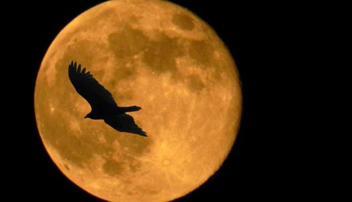 Mjesec se smanjuje zbog povremene tektonske aktivnosti