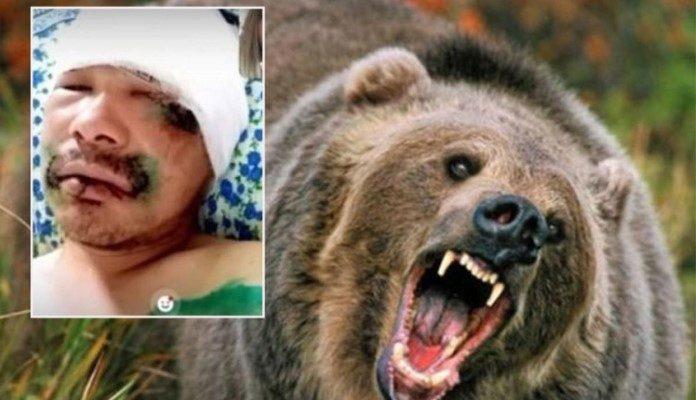 Rus odgrizao medvjedu jezik, a dobio i kaznu