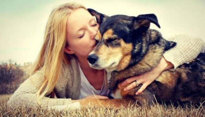 Psi nas spašavaju od srčanih i moždanih udara
