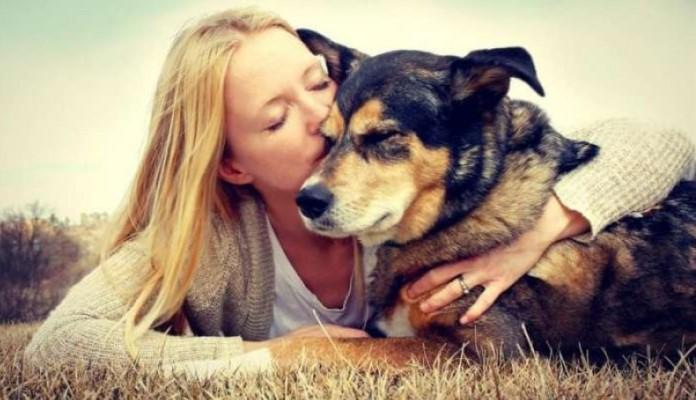 Psi mogu nanjušiti koronavirus iz znoja oboljele osobe?