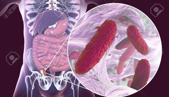 Superbakterije otporne na antibiotike šire se europskim bolnicama