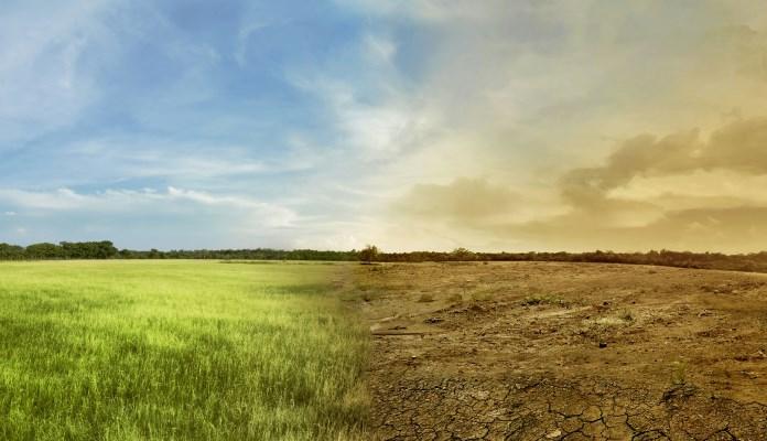 Godina 2019. jedna od tri najtoplije od polovine 19. vijeka
