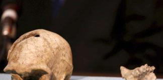 Arheološka Otkrića