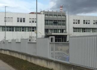 Kompanija Violeta od aprila počinje izvoz za Albaniju