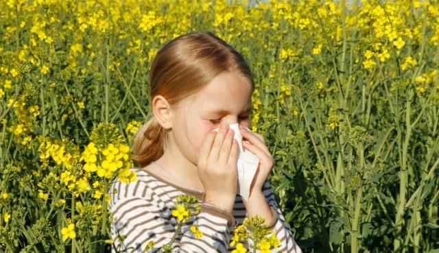 Proljetne alergije kod djece