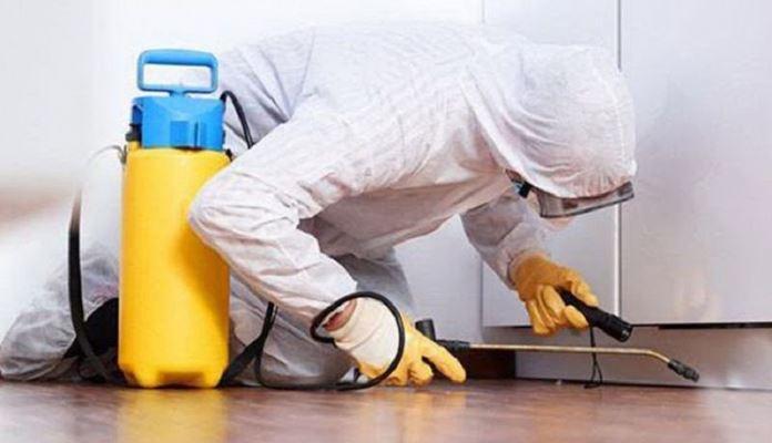 Dezinfekcija, dezinsekcija i deratizacija kao preventivne mjere