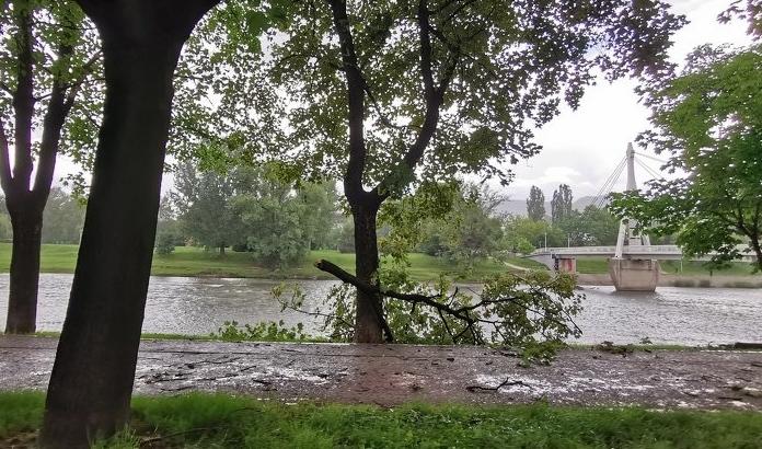 Olujni vjetar lomio drveće u Zenici (FOTO)