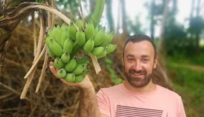 Banane rodile u Maglaju, uskoro će ih brati i Zagrepčani