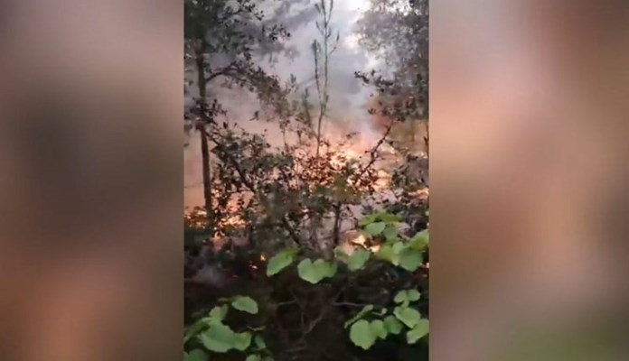 Požar na Zrću: Na terenu više od 40 vatrogasaca, stiže i kanader