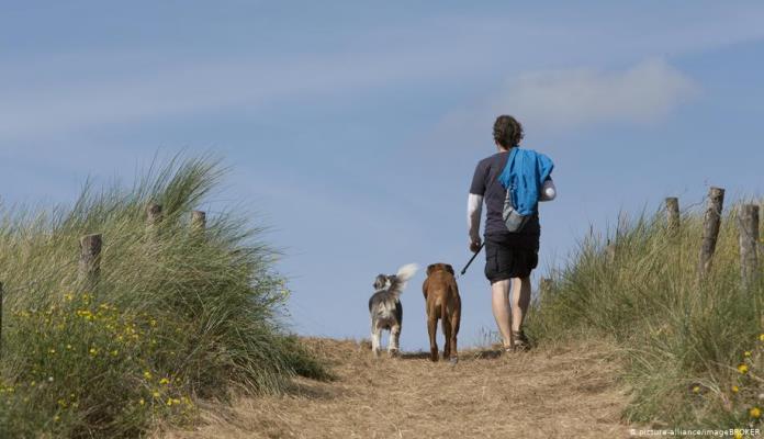 Njemačka uvodi obavezu šetanja pasa
