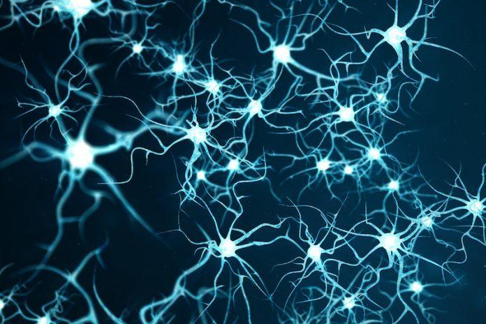 Neuron Shock