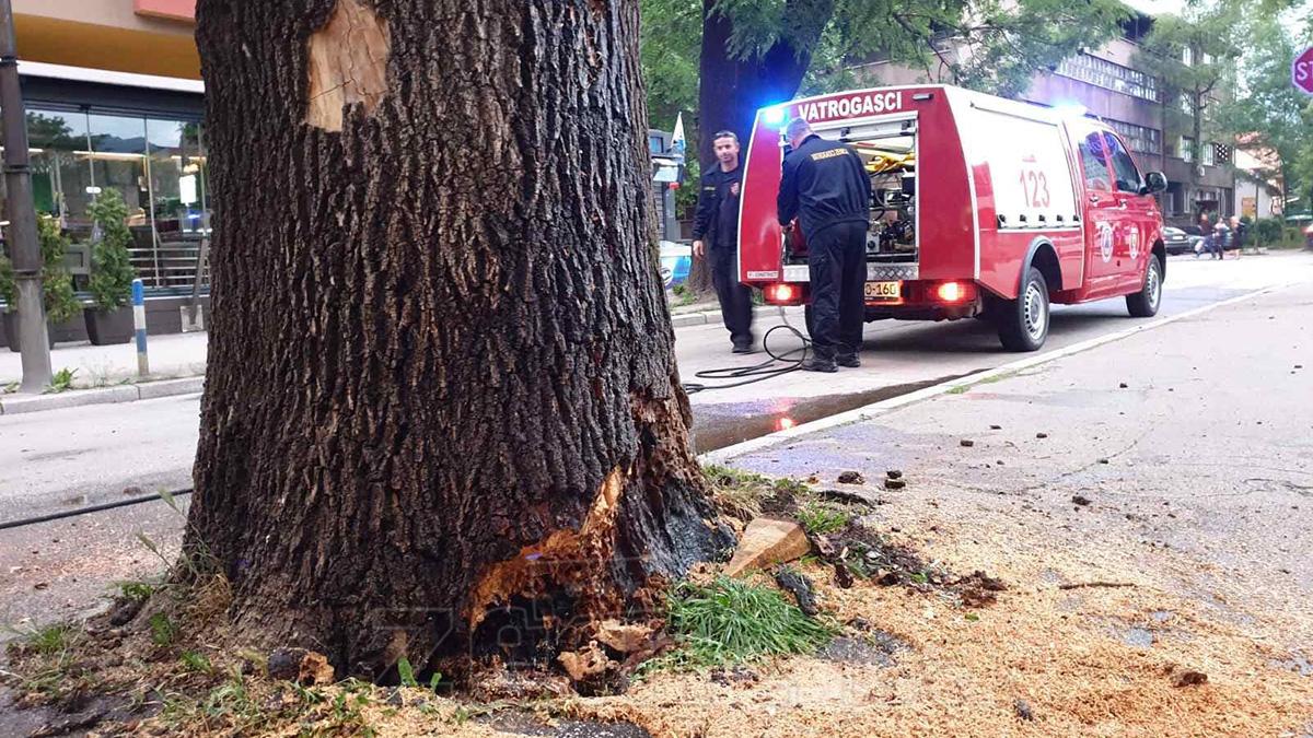 Gori stablo u Masarykovoj ulici u Zenici (FOTO)