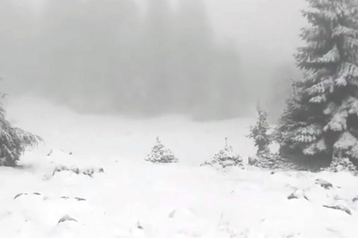 Snijeg Vlašić