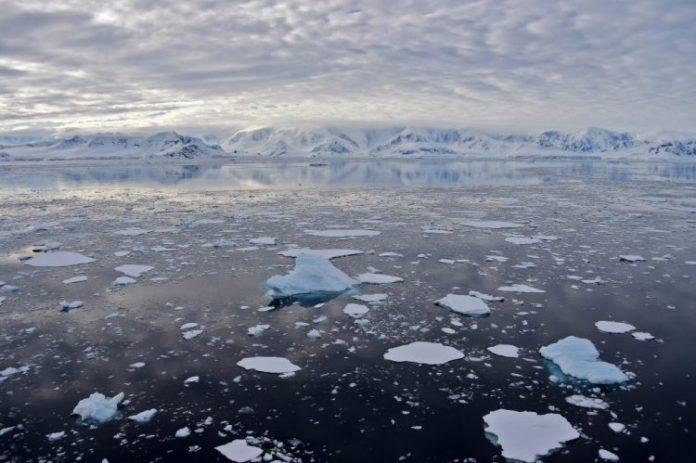 Južni Okean Fotka