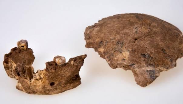 Neandertalci Nemaju Cisto Evropsko Porijeklo Lobanja Be 60d477cf07117