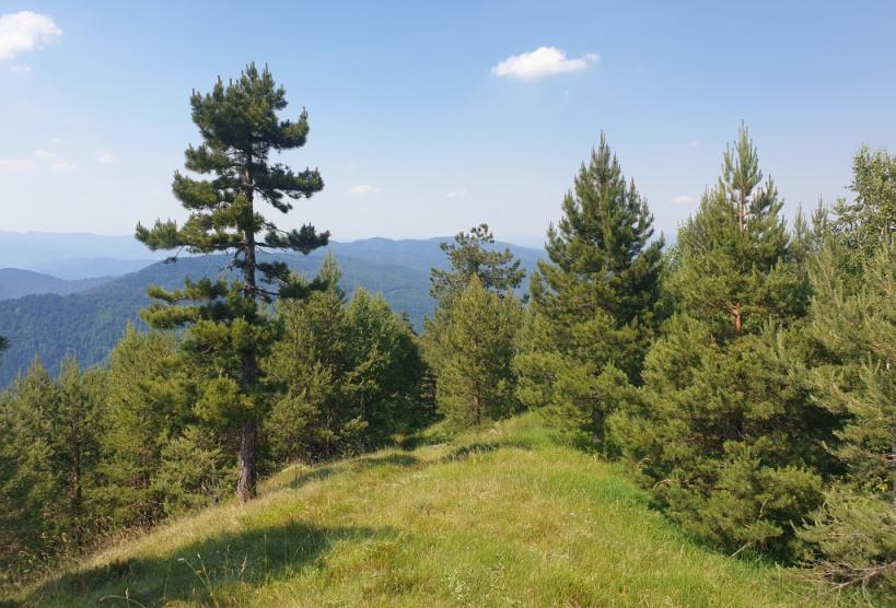 Planinarska posjeta Tvrtkovca iz pravca Begovog Hana (FOTO)