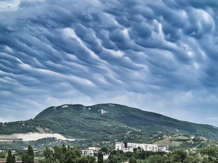 Zenica Sladić Oblaci