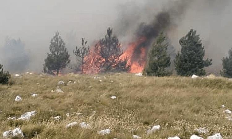 U HNK registrovano 29 požara za 24 sata